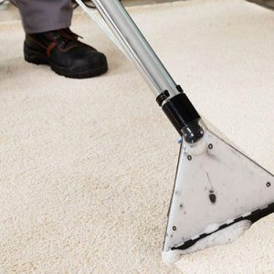 The Art of Carpet Cleaning
