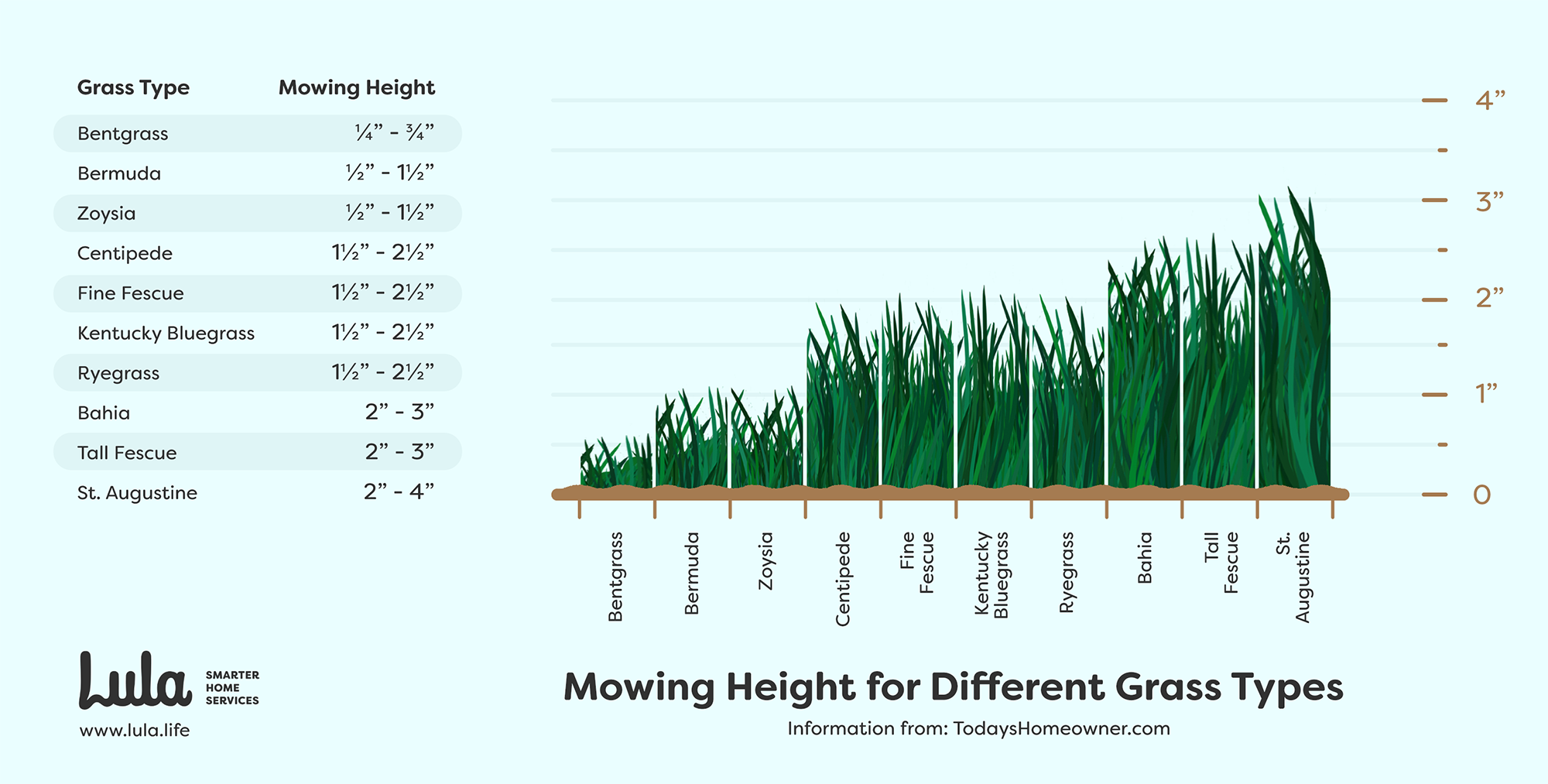 mowing height for different types of grasses