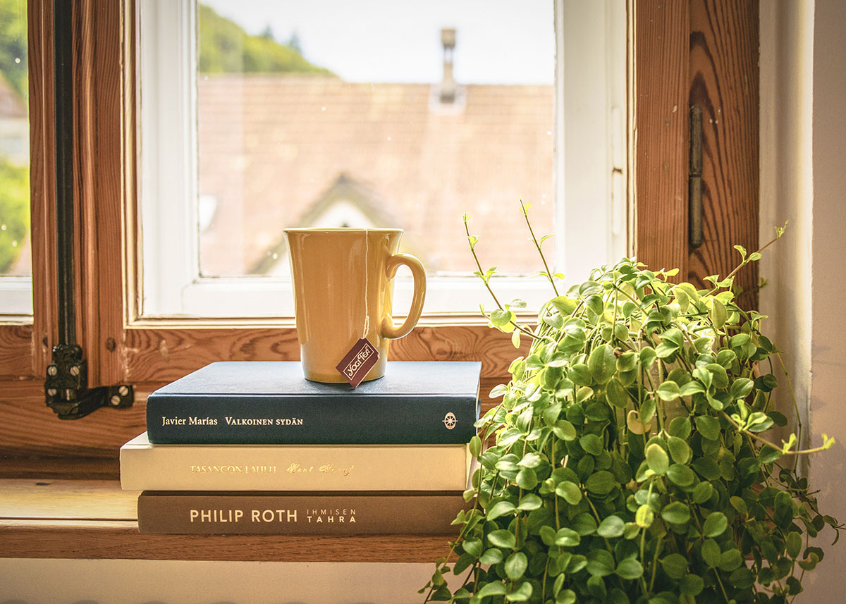 house plant next to a stack of books