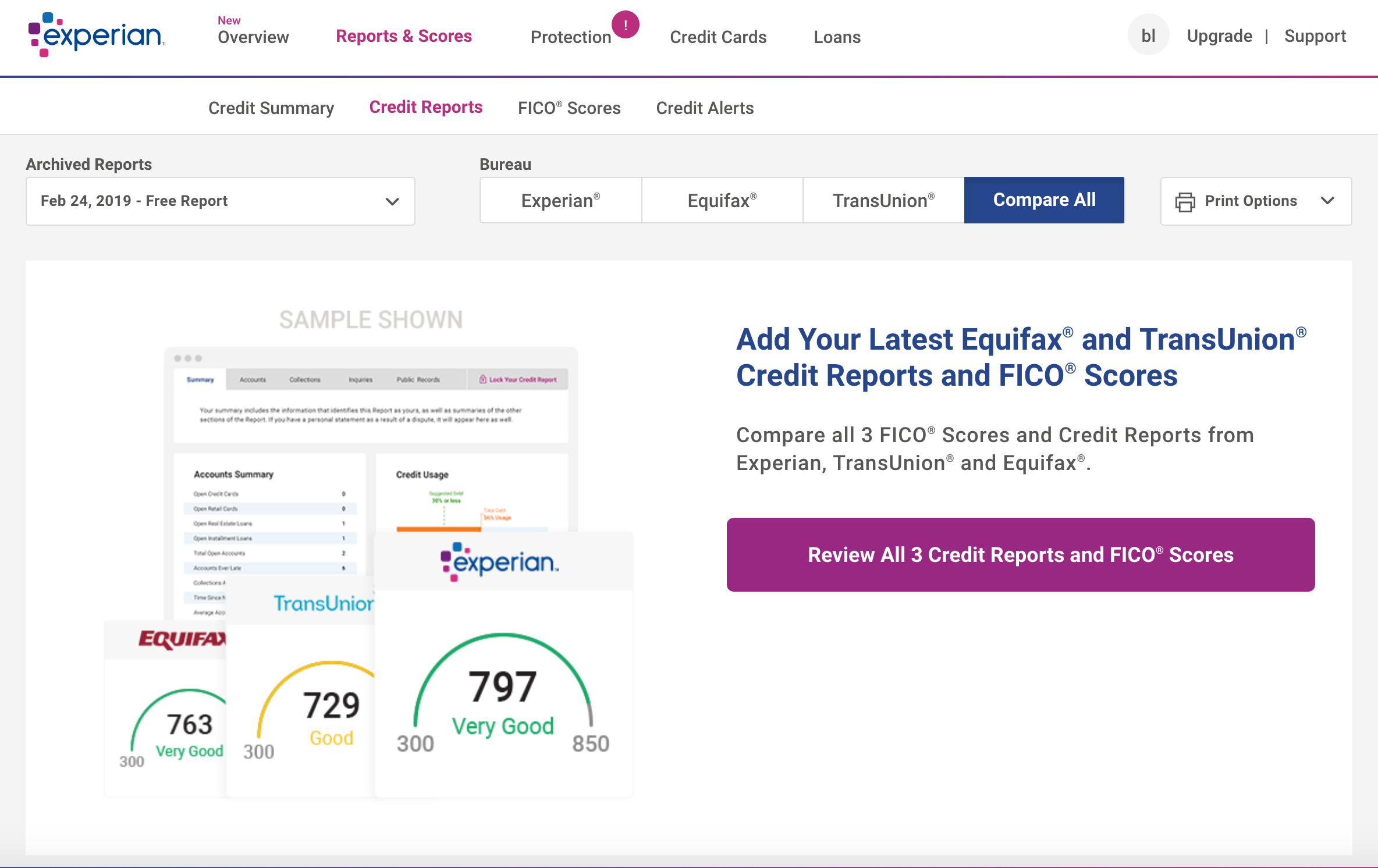 experian credit report dashboard